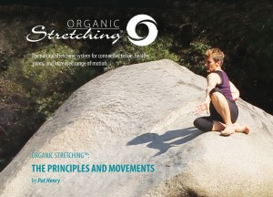 Organic Stretching